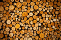 Plenty of wood prepared for the winter in pile Stock Image
