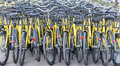 Plenty of yellow bikes parked near a bicycle rental station in a park in bucharest romania Royalty Free Stock Photos