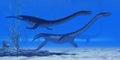 Plesiosaurus Jurassic Reptiles