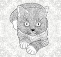 Plinth for t-shirts, . Coloring pages for adults. hand painted cat with an ethnic floral pattern. Abstract flower mandala.