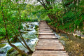 Plitvice, Croatia Forest Trail Royalty Free Stock Photo