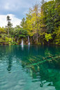 Plitvice lakes in Croatia Stock Photo