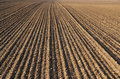 Plough agriculture field Stock Photo