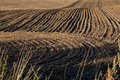Ploughed field with dark earth and curved tracks Royalty Free Stock Photo