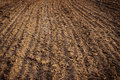 Ploughed field, soil close up, agricultural background Royalty Free Stock Photo