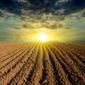 Ploughed field sunset Royalty Free Stock Photo