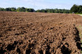 Plowed autumn farm field Royalty Free Stock Photo