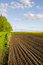 Plowed farm field in spring Royalty Free Stock Photo