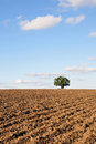 Plowed Farmland Stock Photos