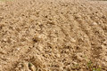 Plowed fertile soil Stock Photo