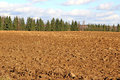 Plowed field prepared for sowing winter crops in russia Royalty Free Stock Photos