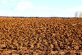 Plowed field prepared for sowing winter crops in russia Stock Photo