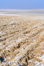 Plowed field in winter Stock Images