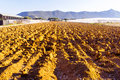Plowed fields and green house Royalty Free Stock Photo