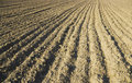 Plowed ground Stock Photography
