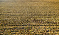 Plowed ground Royalty Free Stock Photo