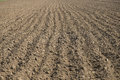 Plowed land Royalty Free Stock Photo