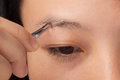 Plucking eyebrows woman her with tweezers Stock Photography
