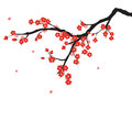 Plum blossom in chinese painting style Royalty Free Stock Photos