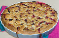 Plum cake close up on a big homemade right out of the oven Royalty Free Stock Images