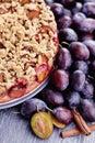 Plum cake homemade sweet food Royalty Free Stock Images