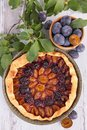 Plum cake and leaf on wood Royalty Free Stock Images