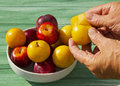 Plum Fresh Stock Photos