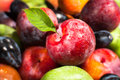 Plum fruit mix macro closeup colorful Stock Image