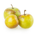 Plum isolated on white background Royalty Free Stock Photo