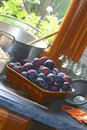 Plum jam preparation Royalty Free Stock Photo