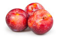 Plum red group on white background Stock Photo
