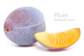 Plum shot of fresh blue on white background Stock Photo