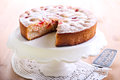 Plum sponge cake with icing sugar on top Royalty Free Stock Photography
