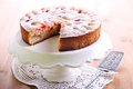 Plum sponge cake with icing sugar on top Royalty Free Stock Photo