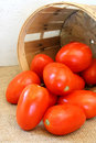 Plum tomatoes and farm basket Royalty Free Stock Photo