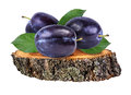 Plum  on a wooden сross section of tree trunk isolated on white Royalty Free Stock Photo