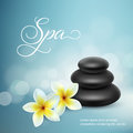 Plumeria flowers and zen stone isolated on white background. Vector illustration