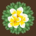 Plumeria seamless vector pattern palm leaves background circular Stock Image