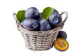 Plums in basket isolated on white Royalty Free Stock Photo