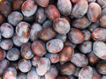 Plums texture Stock Images