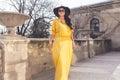 Plus size fashion model Royalty Free Stock Photo