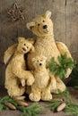 Plush bears Royalty Free Stock Photo
