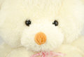 Plush dolls bears Royalty Free Stock Photo