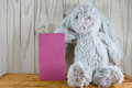 Plush rabbit sits and holds a blank pink sign