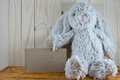 Plush rabbit sits