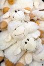 Plush sheep Stock Image