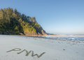PNW in Sand on Pacific Coast Royalty Free Stock Photo