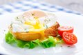 Poached egg with dill on bread tomato a side Royalty Free Stock Photography