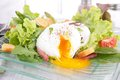 Poached egg and salad close up on Royalty Free Stock Photos
