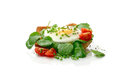 Poached egg with watercress on toast Stock Image